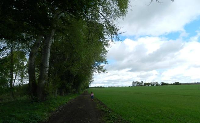 Mia field