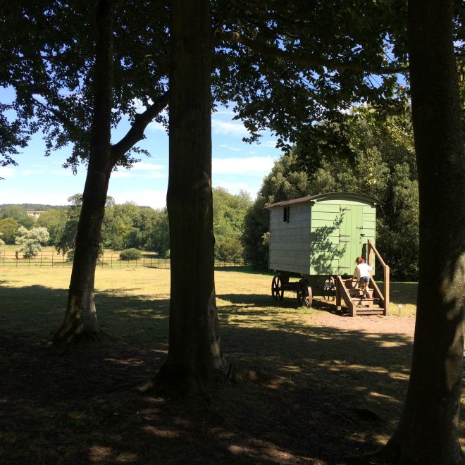 Trees shepherd's hut