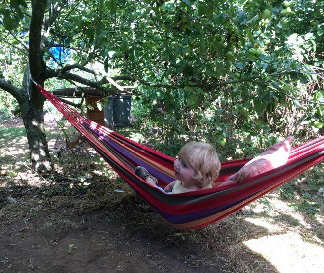 Joe hammock