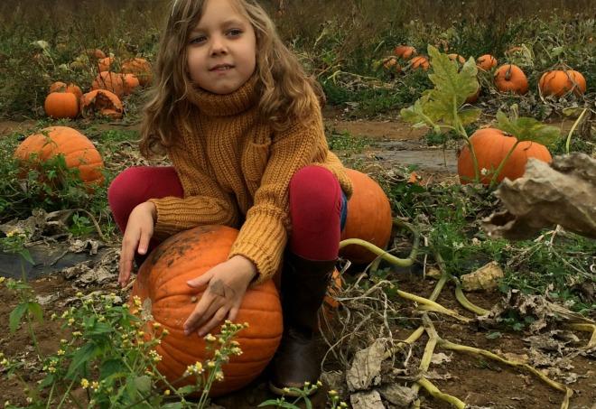 Mia pumpkin
